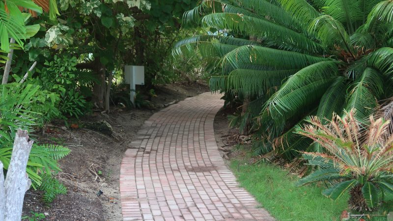 Path to FREE Beach Islamorada